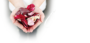 Wedding Rose Petals and Favours NZ - Church Confetti