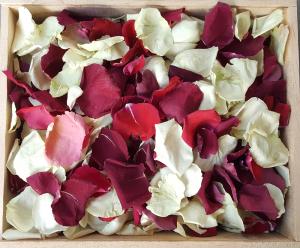 Romance petals bulk