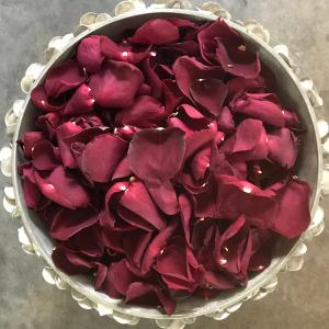 Plum rose petals