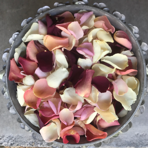 Autumn rose petals